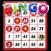 Bingo Classic Game – Offline Free v1.5 [MOD]