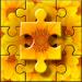 Jigsaw Puzzles Classic – câu đố v5.7.7 [MOD]