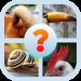 Animal Body Parts Quiz Game v8.7.3z [MOD]