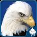 Birds Jigsaw Puzzles Game v1.9.18 [MOD]