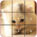 Cat puzzles Jigsaw , Slide ,2048 Puzzle Free Games v1.15.7 [MOD]